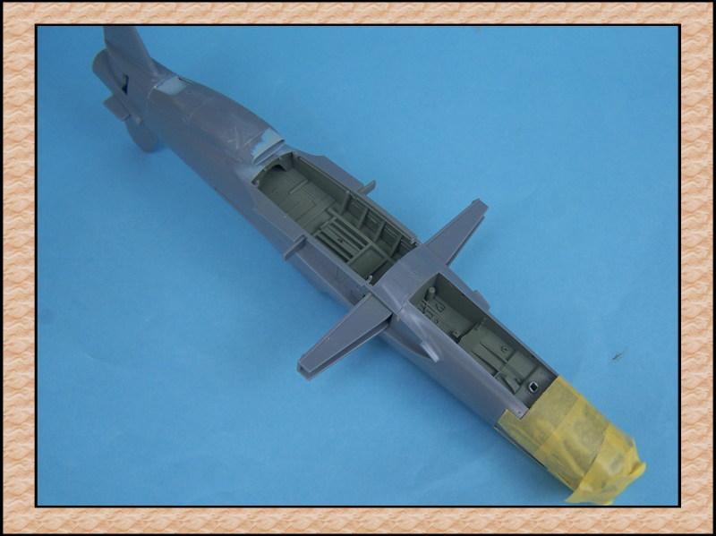 [Tamiya 1/48] Dornier Do335A-12c'est fini! Mon20