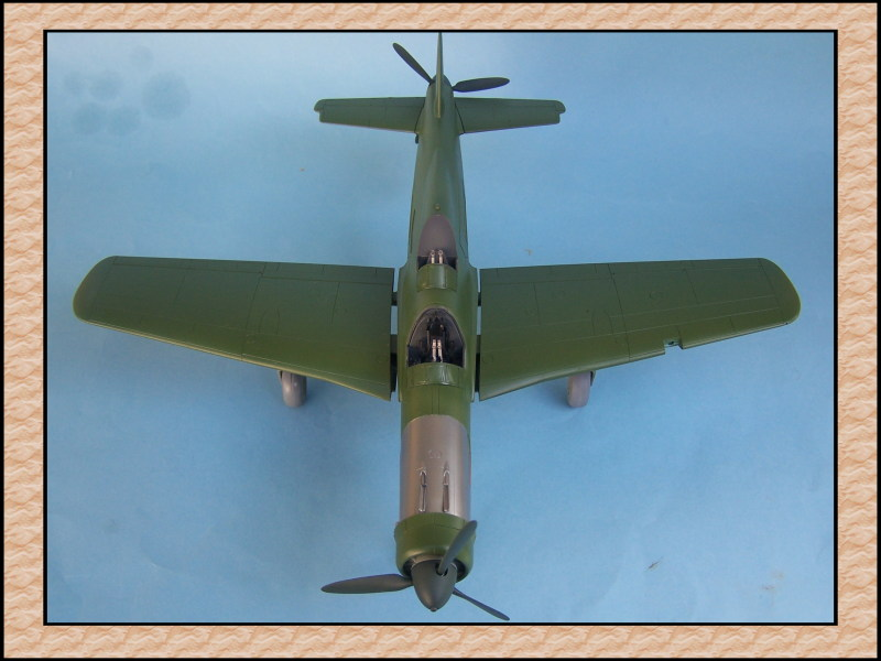 [Tamiya 1/48] Dornier Do335A-12c'est fini! Mon24