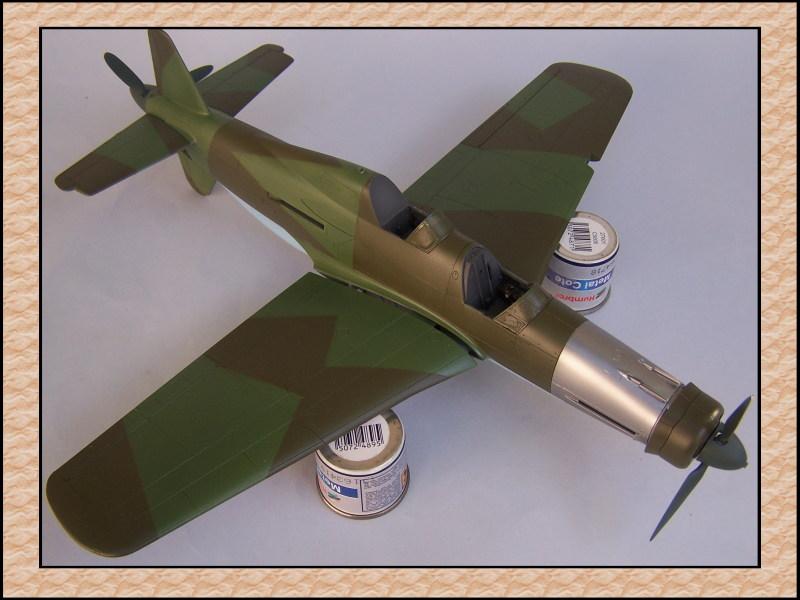 [Tamiya 1/48] Dornier Do335A-12c'est fini! Mon27