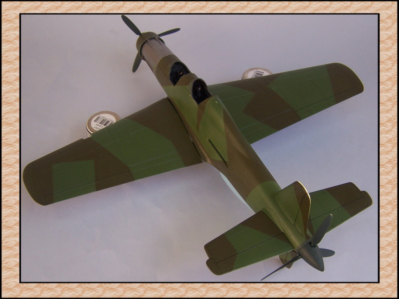 [Tamiya 1/48] Dornier Do335A-12c'est fini! Mon29