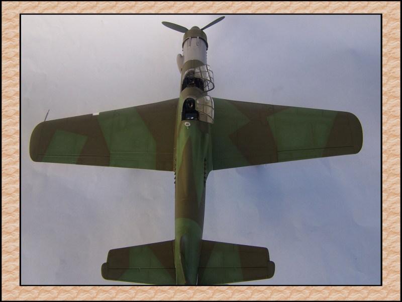 [Tamiya 1/48] Dornier Do335A-12c'est fini! Mon39